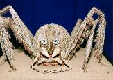 "Spider from the DEFA film ""Olle Hexe"" (1991)"